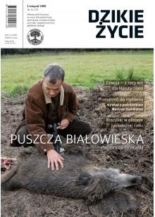 Dzikie Życie 2008, nr 11 (173), listopad