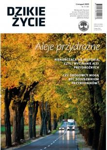 Dzikie Życie 2009, nr 11 (185), listopad