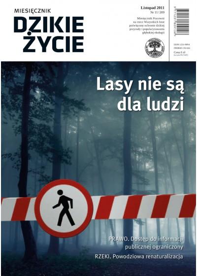 Dzikie Życie 2011, nr 11 (209), listopad