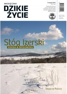 Dzikie Życie 2012, nr 11 (221), listopad