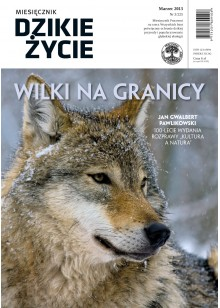 Dzikie Życie 2013, nr 3 (225), marzec :: epub