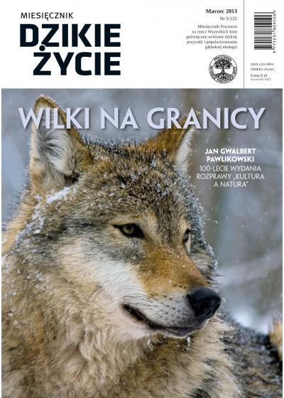 Dzikie Życie 2013, nr 3 (225), marzec