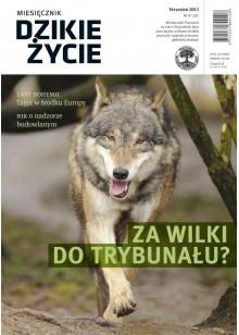 Dzikie Życie 2013, nr 9 (231), wrzesień