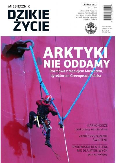 Dzikie Życie 2013, nr 11 (233), listopad :: epub