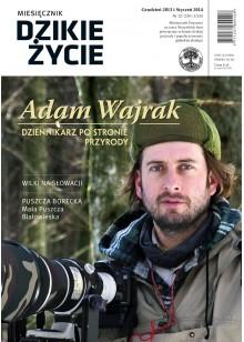 Dzikie Życie 2013-2014, nr 12-1 (234-235), grudzień-styczeń