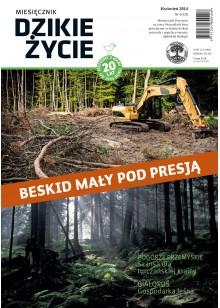 Dzikie Życie 2014, nr 4 (238), kwiecień