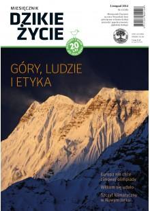 Dzikie Życie 2014, nr 11 (245), listopad