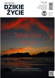 Dzikie Życie 2017, nr 3 (273) marzec :: epub
