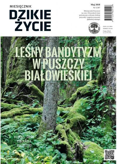 Dzikie Życie 2018, nr 5 (287) maj