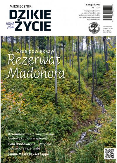 Dzikie Życie 2020, nr 11 (317) listopad :: mobi