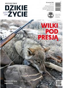 Dzikie Życie 2021, nr 4 (322) kwiecień